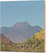 Four Peaks From The Apache Trail Wood Print
