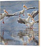 Four Pelican Landing Watercolor Effect Wood Print