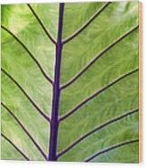 Four Seasons 89 Wood Print