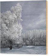 Four Seasons - Winter Wood Print by Akos Kozari