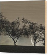Four Trees And A Moon Wood Print