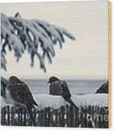 Four Turtle Doves Wood Print