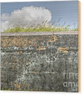 Fourt Moultrie Battery Jasper Wall Wood Print