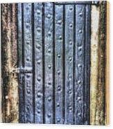 Fourt Moultrie Door Wood Print