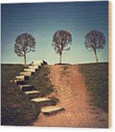 Fourteen Wood Print by Alexander Kuzmin