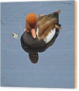 Fowl Ginger Wood Print