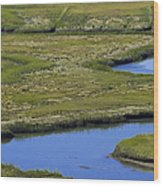 Fox Creek Marsh Wood Print