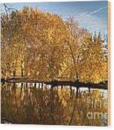 Fox River-jp2418 Wood Print