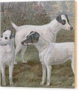 Fox Terriers Wood Print