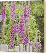 Foxglove Fence Wood Print by Anne Gilbert