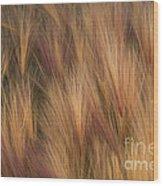 Foxtail Wood Print