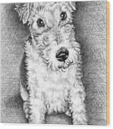 Foxterrier Wood Print
