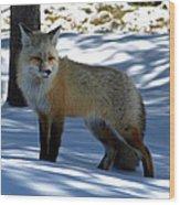 Foxy Shadows Wood Print