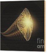 Fractal 013-4 Wood Print