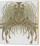Fractal 082 Wood Print