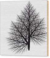 Fractal Essence Of A Tree Wood Print