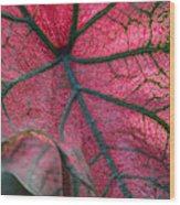 Fractal Micropolis Wood Print