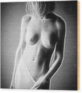 Fractal Nude C475 Wood Print