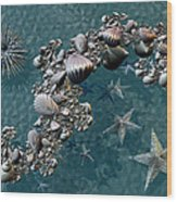 Fractal Sea Life Wood Print