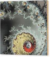 Fractal Spiral Design Grey Khaki Red Wood Print