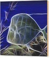 Fractalius Aquatic Fish Wood Print