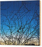 Fractured Sunset Wood Print