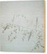 Fragile - British Columbia - Square Wood Print