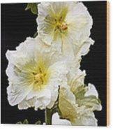 Fragile Flower Wood Print