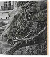 Fragment Of Bartholdi Fountain Wood Print