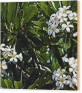 Fragrant Clusters Wood Print