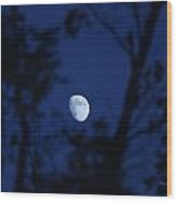 Framed Moon Wood Print by Edward Hamilton
