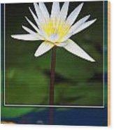 Framed Serenity Wood Print