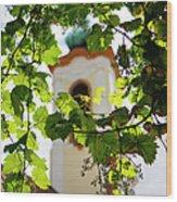Framed Steeple Wood Print
