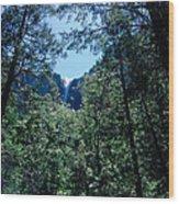 Framing A Waterfall Wood Print