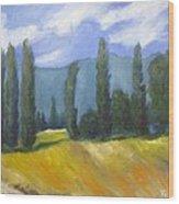 France Landscape Wood Print