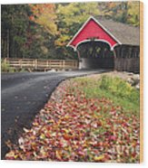 Franconia Notch State Park Wood Print