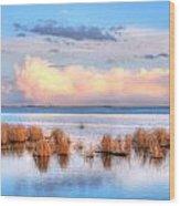 Frank Lake Alberta Wood Print