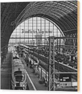 Frankfurt Bahnhof - Train Station Wood Print