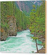 Fraser River Beyond Overlander Falls Along Yellowhead Highway-bc Wood Print