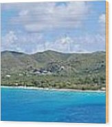Frederiksted Wood Print