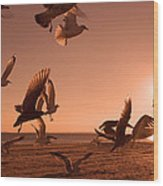 Free To Fly Wood Print