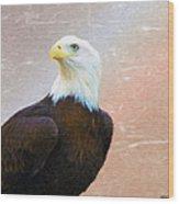 Freedom Flyer Wood Print