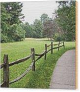 Freedom Trail Wood Print