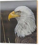 Freedom's Spirit Wood Print