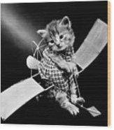 Frees Kittens, C1914 Wood Print