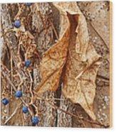 Freeze Dried Wood Print