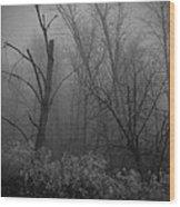 Freezing Rogue Valley Fog At Night Wood Print