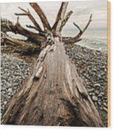 French Beach Wood Print