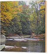 French Broad River In Fall Wood Print