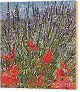 French Lavender Field Wood Print